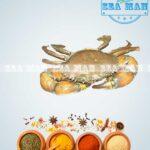 Mud-Crab-Medium-2