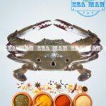 Sea-Crab-1