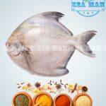 White-Pomfret-fish-2
